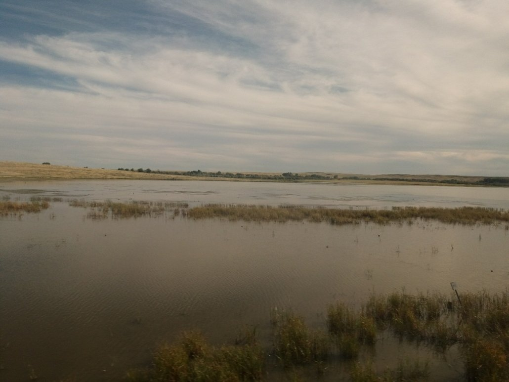 Scenic view from the Empire Builder Minnesota